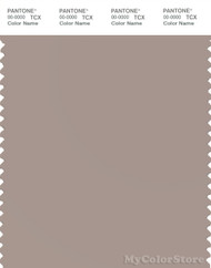 PANTONE SMART 15-1506X Color Swatch Card, Etherea
