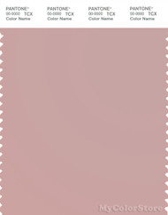 PANTONE SMART 15-1607X Color Swatch Card, Pale Mauve