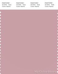 PANTONE SMART 15-1906X Color Swatch Card, Zephyr