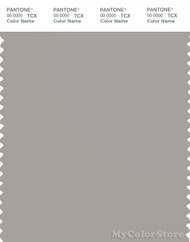 PANTONE SMART 15-3800X Color Swatch Card, Porpoise
