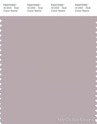 PANTONE SMART 15-3802X Color Swatch Card, Cloud Gray