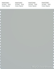 PANTONE SMART 15-4003X Color Swatch Card, Storm Gray