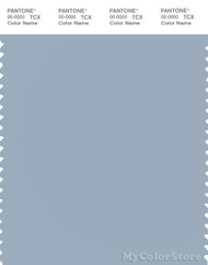 PANTONE SMART 15-4008X Color Swatch Card, Blue Fog