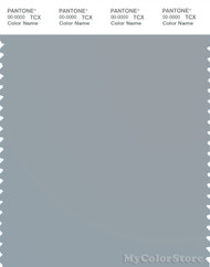 PANTONE SMART 15-4305X Color Swatch Card, Quarry