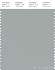 PANTONE SMART 15-4306X Color Swatch Card, Belgian Block
