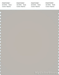 PANTONE SMART 15-4502X Color Swatch Card, Silver Cloud