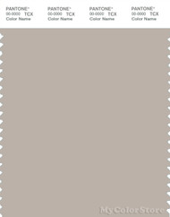 PANTONE SMART 15-4503X Color Swatch Card, Gray