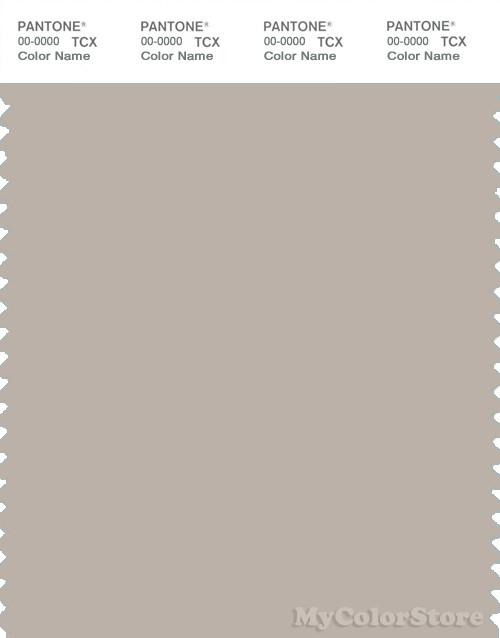 PANTONE SMART 15-4503X Color Swatch Card, Gray