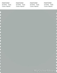 PANTONE SMART 15-4702X Color Swatch Card, Puritan Gray