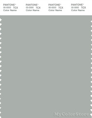 PANTONE SMART 15-4704X Color Swatch Card, Pigeon