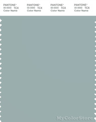 PANTONE SMART 15-4706X Color Swatch Card, Gray Mist