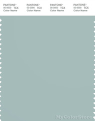 PANTONE SMART 15-4707X Color Swatch Card, Blue Haze