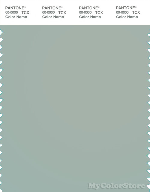 PANTONE SMART 15-5205X Color Swatch Card, Aqua Gray