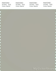 PANTONE SMART 15-6304X Color Swatch Card, Pussywillow Gray