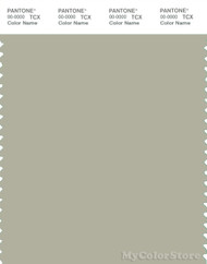 PANTONE SMART 15-6307X Color Swatch Card, Agate Gray