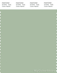 PANTONE SMART 15-6315X Color Swatch Card, Smoke Green