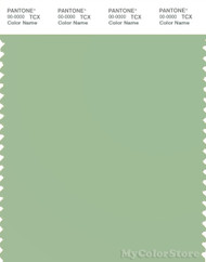 PANTONE SMART 15-6317X Color Swatch Card, Iris Green