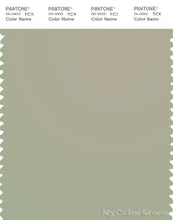 PANTONE SMART 15-6410X Color Swatch Card, Moss Gray