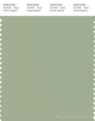 PANTONE SMART 15-6414X Color Swatch Card, Reseda