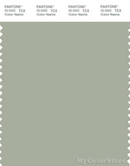 PANTONE SMART 16-0110X Color Swatch Card, Desert Sage