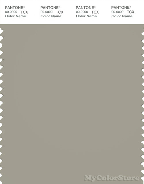 PANTONE SMART 16-0207X Color Swatch Card, Green Mist