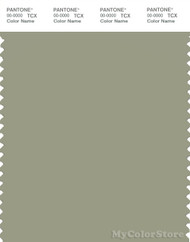 PANTONE SMART 16-0213X Color Swatch Card, Tea