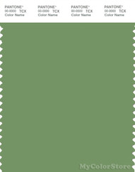PANTONE SMART 16-0228X Color Swatch Card, Jade Green