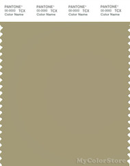 PANTONE SMART 16-0518X Color Swatch Card, Gray Green