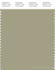 PANTONE SMART 16-0613X Color Swatch Card, Elm