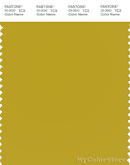 PANTONE SMART 16-0840X Color Swatch Card, Antique Moss