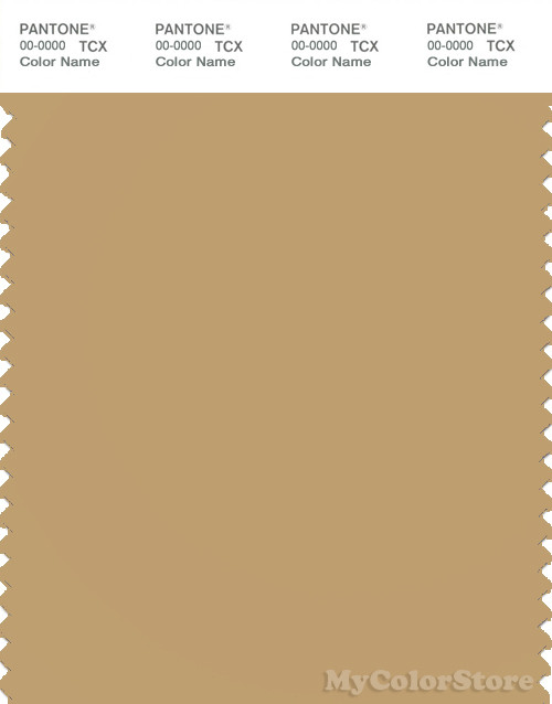 PANTONE SMART 16-0928X Color Swatch Card, Curry