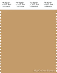 PANTONE SMART 16-0940X Color Swatch Card, Taffy