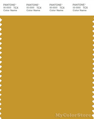 PANTONE SMART 16-0953X Color Swatch Card, Tawny Olive
