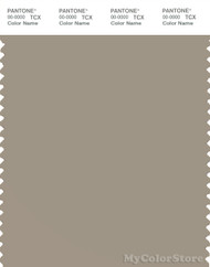 PANTONE SMART 16-1107X Color Swatch Card, Aluminum