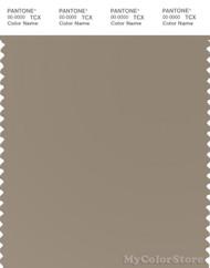 PANTONE SMART 16-1109X Color Swatch Card, Greige