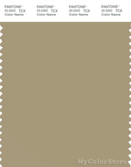 PANTONE SMART 16-1110X Color Swatch Card, Olive Gray