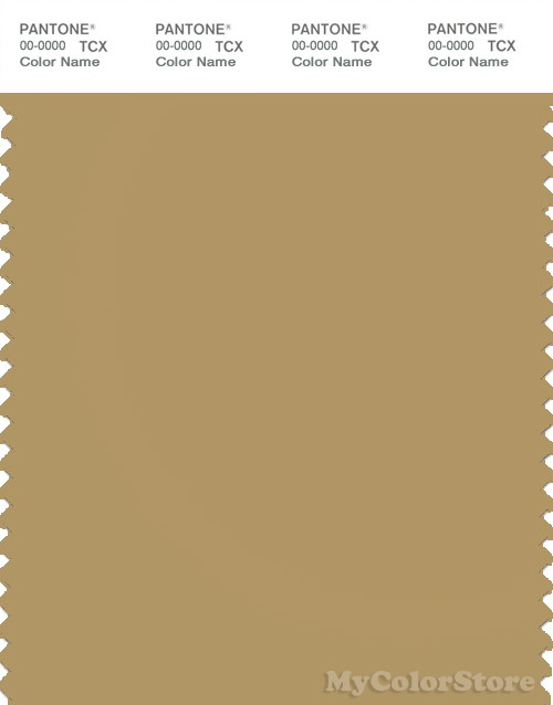 PANTONE SMART 16-1126X Color Swatch Card, Antelope