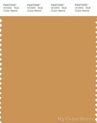 PANTONE SMART 16-1143X Color Swatch Card, Honey Yellow