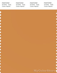 PANTONE SMART 16-1148X Color Swatch Card, Nugget