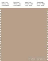 PANTONE SMART 16-1212X Color Swatch Card, Nomad