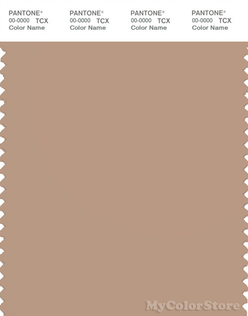 PANTONE SMART 16-1317X Color Swatch Card, Brush