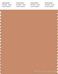 PANTONE SMART 16-1328X Color Swatch Card, Sandstone