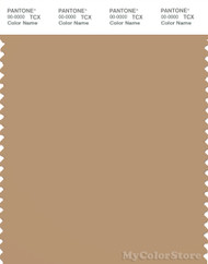 PANTONE SMART 16-1334X Color Swatch Card, Tan