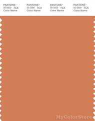 PANTONE SMART 16-1337X Color Swatch Card, Coral Gold