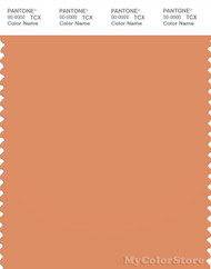 PANTONE SMART 16-1338X Color Swatch Card, Copper Tan