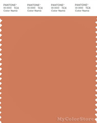 PANTONE SMART 16-1340X Color Swatch Card, Brandied Melon