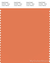 PANTONE SMART 16-1344X Color Swatch Card, Dusty Orange