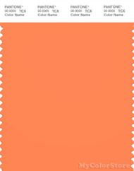 PANTONE SMART 16-1360X Color Swatch Card, Nectarine