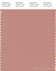 PANTONE SMART 16-1516X Color Swatch Card, Cameo Brown