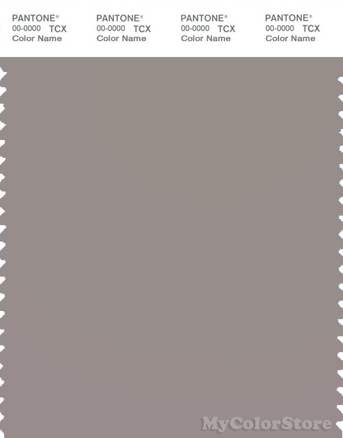 PANTONE SMART 16-3800X Color Swatch Card, Satellite
